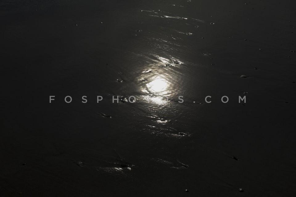 fos3101178
