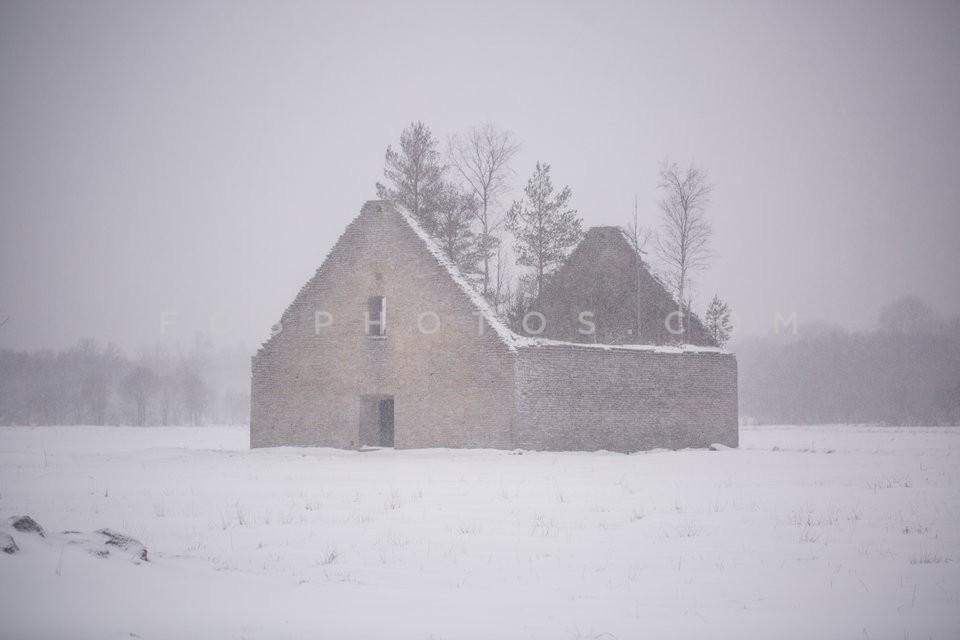 Ruined house with trees isnide it in a frozen landscape in Baltic region / Κατεστραμένο σπίτι με δέντρα στο εσωτερικό του σε παγωμένο περιβάλλον στην Βαλτική