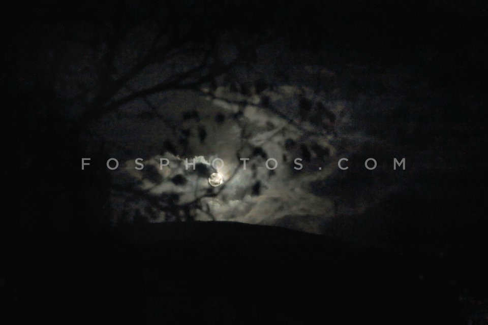 fos0901995