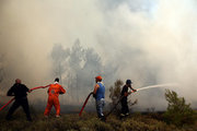 Firefighters and local residents battle with a wildfire in Metohi area of Attica, some 40 Km north of Athens, Greece, on August 14, 2017. / Φωτιά στο Μετόχι της Ανατολικής Αττικής, Δευτέρα 14 Αυγούστου 2017