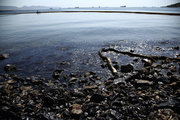 "Images from the island of Salamis on September 14, 2017. Pollution is spread in the Saronic Gulf, south of Athens, after a small tanker sank in the early hours of Sunday morning, the tanker ""Agia Zoni II"" is thought to have been carrying 2,200 metric tons of fuel oil and 370 metric tons of marine gas oil. / Ρύπανση στο Σαρωνικό μετά τη βύθιση δεξαμενοπλοίου. Εικόνες απο την ακτή μεταξύ Κυνοσούρας και Σεληνίων, Σαλαμίνα 14 Σεπτεμβρίου 2017"