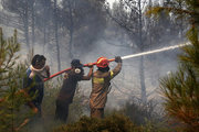 Firefighters and local residents battle with a forest fire in Metohi area of Attica, some 40 Km north of Athens, Greece, on August 14, 2017. / Φωτιά στο Μετόχι της Ανατολικής Αττικής, Δευτέρα 14 Αυγούστου 2017