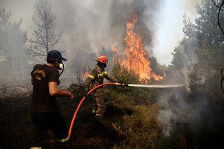 Greece Forest Fire / Φωτιά στην Ανατολική Αττική