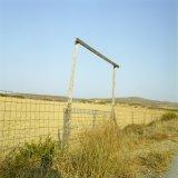 Field entrane in eastern Lasithi, Crete, Greece, August 2011 / Είσοδος χωραφιού στο ανατολικό Λασίθι, Κρήτη, Αύγουστος 2011