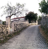 Road in Neohori village in the Erissos area, Island of Kefalonia, Greece, August 2011 / Δρόμος στο Νεοχώρι Ερίσσου, Κεφαλονιά, Αύγουστος 2011