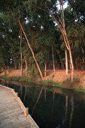 Small river in the location Chora of town Vonitsa, Aetolia Akarnania, western Greece, August 2013 / Μικρό ποτάμι στη τοποθεσία Χώρα της κωμόπολης Βόνιτσας, Αιτωλοακαρνανιία, Αύγουστος 2013