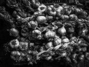 Garlics, Cephalonia, Ionian islands, Greece, August 2016 / Πλεξίδες με σκόρδα, Κεφαλονιά, Αύγουστος 2016