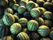 Watermelons, Cephalonia, Ionian islands, Greece, August 2016 / Καρπούζια, Κεφαλονιά, Αύγουστος 2016
