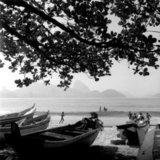 Boats under a tree in Ipanema, Rio de Janeiro, Brazil 2001 / Βάρκες κάτω από δέντρα σε παραλία, Ρίο ντε Τζανέιρο, Βραζιλία, 2001