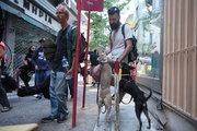 Two dogs and their boss. Downtown Athens, Greece, May2017 / Δύο σκύλοι και το αφεντικό τους. Στο εμπορικό τρίγωνο της Αθήνας, Μάιος 2017