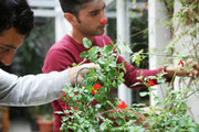 Urban Farmers of Athens, a team of young agronomists working in urban spaces, Athens, Greece, October 2017 / Urban Farmers of Athens, ομάδα αστικών αγροτών, Αθήνα, Οκτώβριος 2017